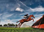 Huntingdon Races 051014