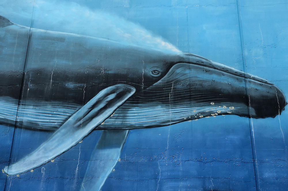 Hawaiian Humpbacks Mural by Robert Wyland in Honolulu, O&rsquo;ahu, Hawaii <br />