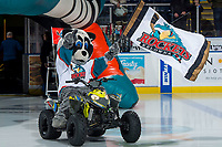 KELOWNA, CANADA - FEBRUARY 8: Rocky Raccoon, the mascot of the Kelowna Rockets enters the ice against the Prince George Cougars on February 8, 2019 at Prospera Place in Kelowna, British Columbia, Canada.  (Photo by Marissa Baecker/Shoot the Breeze)