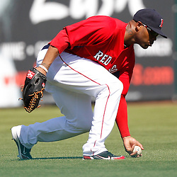 February 28, 2011; Fort Myers, FL, USA; Boston Red Sox left fielder Carl Crawford (13) scoops up a ground ball during a spring training exhibition game against the Minnesota Twins at City of Palms Park.  Mandatory Credit: Derick E. Hingle-US PRESSWIRE