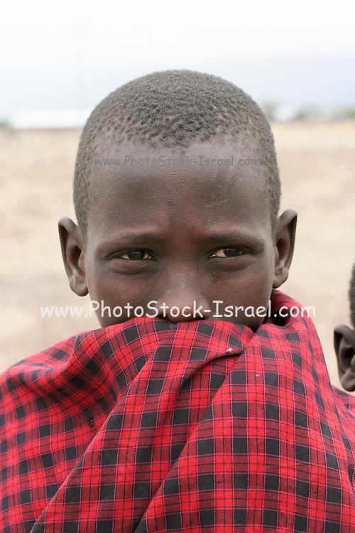 Africa, Tanzania, Maasai an ethnic group of semi-nomadic people