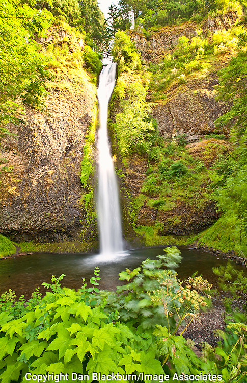 Horsetail Falls in Full Flow