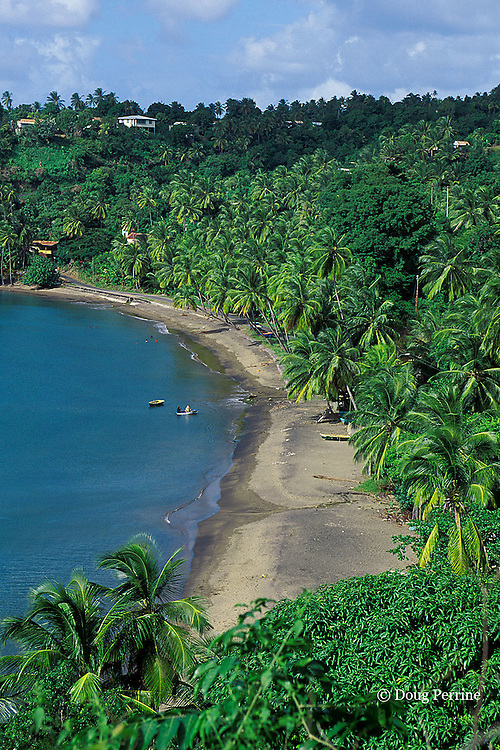 beach on northwest coast of Dominica ( Eastern Caribbean )