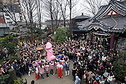 """Participants carry a portable shrine on which is mounted a 2.5 meter pink phallus in the grounds of Wakamya Hachimangu shrine during the Kanamara Festival in Kawasaki, Japan on 04 April 2010. The fertility festival, often just called the """"penis festival,"""" has been held since the early 1600s. Kanamara means metal phallus, so named after a story dating back hundreds of years in which a local blacksmith made an iron phallus to protect a girl who was thought to be cursed. Today, the festival also aims to promote awareness of AIDS and STDs.."""