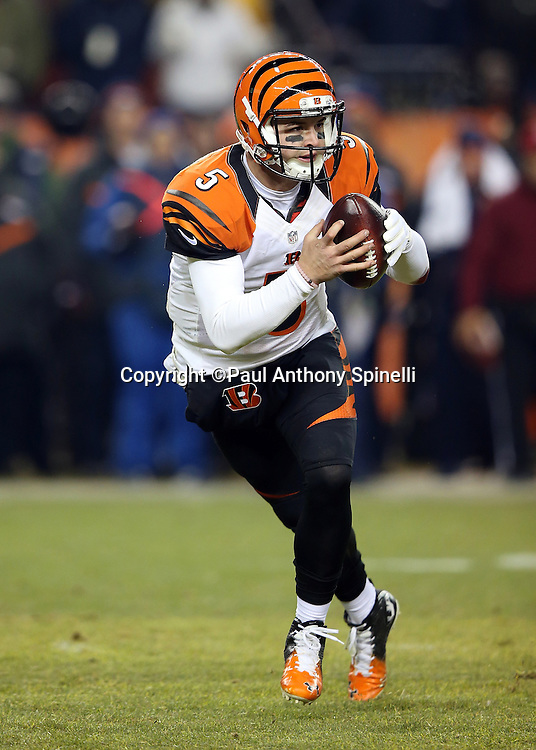 Cincinnati Bengals quarterback AJ McCarron (5) scrambles during the 2015 NFL week 16 regular season football game against the Denver Broncos on Monday, Dec. 28, 2015 in Denver. The Broncos won the game in overtime 20-17. (©Paul Anthony Spinelli)