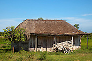Farm house and ox cart near Sabalo, Pinar del Rio, Cuba.