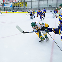 5th year forward Kylie Gavelin (13) of the Regina Cougars in action during the Women's Hockey Home Game on October 15 at Co-operators arena. Credit: Arthur Ward/Arthur Images