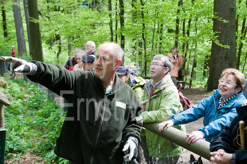 Führung des Rangers im Luchsgehege Rabenklippe, Harz, Niedersachsen, Deutschland | ranger guided tour, Lynx Compound Rabenklippe, Harz, Lower Saxony, Germany