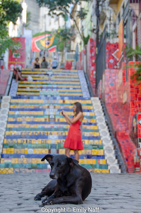 The steps of Lapa created by artist Selaron.  The steps have been a work in progress since 1990, when the artist began covering them with tiles from all over the world.