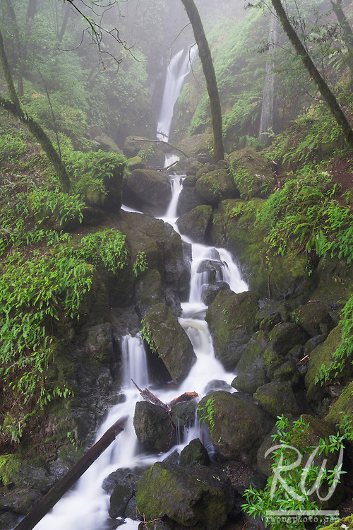 Cataract Falls in Fog / Mount Tamalpais Watershed, Marin County, California