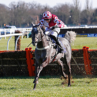 Baby mix and Paddy Brennan winning the 2.00 race