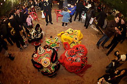 Stock photo of dragon costumes laid out for the Chinese New Year celebration in Houston Texas
