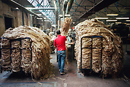 A worker loading unprocessed jute into a machine at Tay Spinners mill in Dundee, Scotland. This factory was the last jute spinning mill in Europe when it closed for the final time in 1998. The city of Dundee had been famous throughout history for the three 'Js' - jute, jam and journalism.