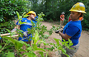 Milby High School senior Karina Sustaita, right, works on a trail at the Houston Arboretum during the Student Conservation Association Houston (SCA) Summer Community Crew Program, July 21, 2014.