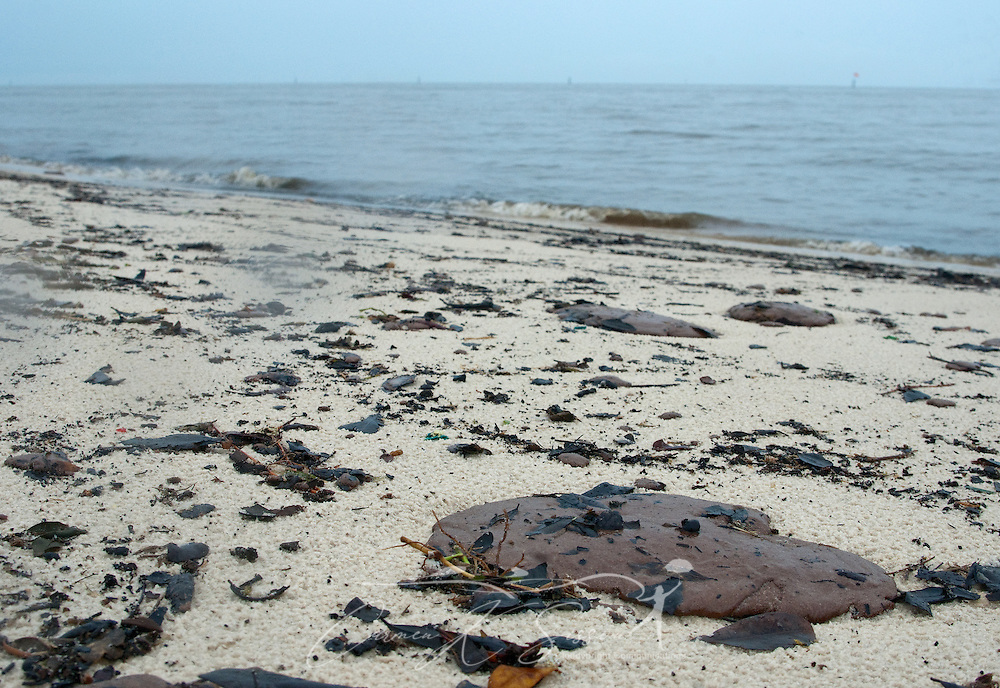 Tar patties of oil litter the beach in Gulfport, Miss. June 30, 2010. Mississippi had been largely spared from the effects of the Deepwater Horizon oil rig explosion April 20, 2010, but winds from Hurricane Alex began pushing oil ashore earlier this week, affecting beaches from Biloxi to Pass Christian.(Photo by Carmen K. Sisson/Cloudybright)
