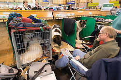 © Licensed to London News Pictures. 10/03/2016. A dog owner their dogs in the dog benches area before a judging competition. Crufts celebrates its 12th anniversary as the Worlds largest dog show. Birmingham, UK. Photo credit: Ray Tang/LNP