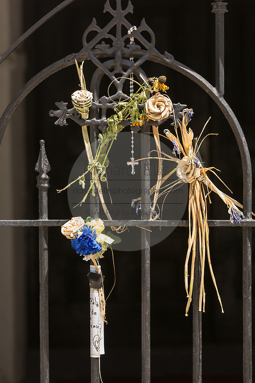 Palmetto roses decorate a iron gate at the historic Mother Emanuel African Methodist Episcopal Church on the eve of the anniversary of the mass shooting June 16, 2016 in Charleston, South Carolina. Nine members were gunned down during bible study at the church on June 17, 2015.
