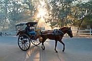 Horse drawn carriage through Bagan, Burma