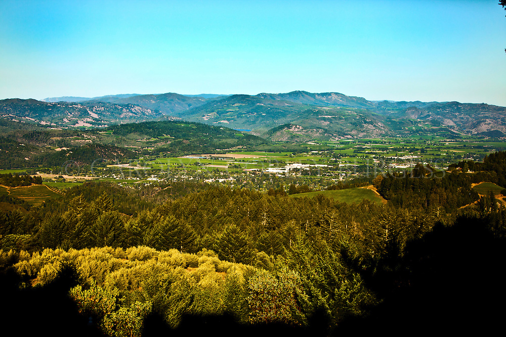 view of Saint Helena from a mountainside vineyard. Saint Helena, California. Napa Valley.