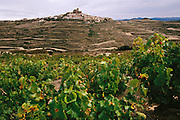 The small medieval village of Ujúe perches atop a hill in the province of Navarra. Constructed high up on the mountain range of the same name, the historic defensive town of Ujue preserves its medieval atmosphere with cobbled streets and stone houses clustered around the fortress-church of St. Mary (XII-XIV) where King Charles II's heart is kept.