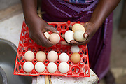 Linna Kinabo filling a tray of eggs.<br /> <br /> Linna set up and now runs a poultry business selling both eggs and meat.<br /> <br /> She attended MKUBWA enterprise training run by the Tanzania Gatsby Trust in partnership with The Cherie Blair Foundation for Women.