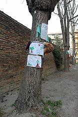 20120313 ALBERI VIALE CAVOUR