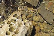 Rocks on the seashore in Big Sur.
