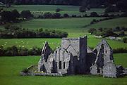 abbey near Cashel