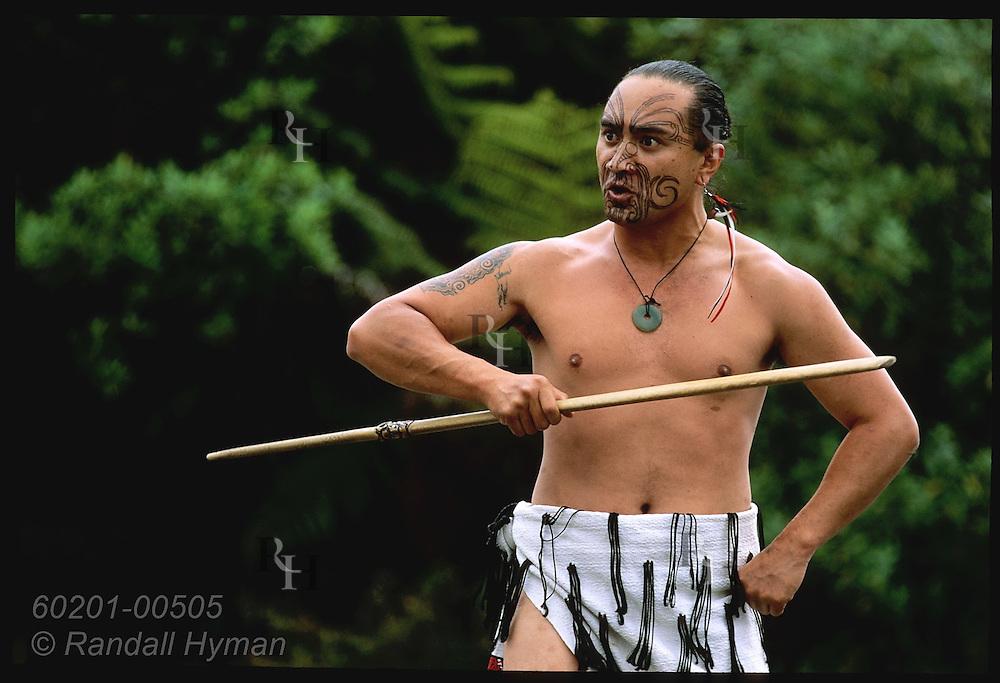 Tattooed Maori man performs ritual challenge and greeting with fighting stick at Waimangu Volcanic Valley; Rotorua, New Zealand