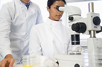 Scientists using microscope in laboratory