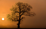 Oulton Park Cheshire Sunrise