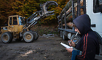 Teleporter loading truck with Common beech (Fagus sylvatica) logs and forest worker logging the measurements. Southern Carpathians, Mehadia, Caras Severin, Romania.