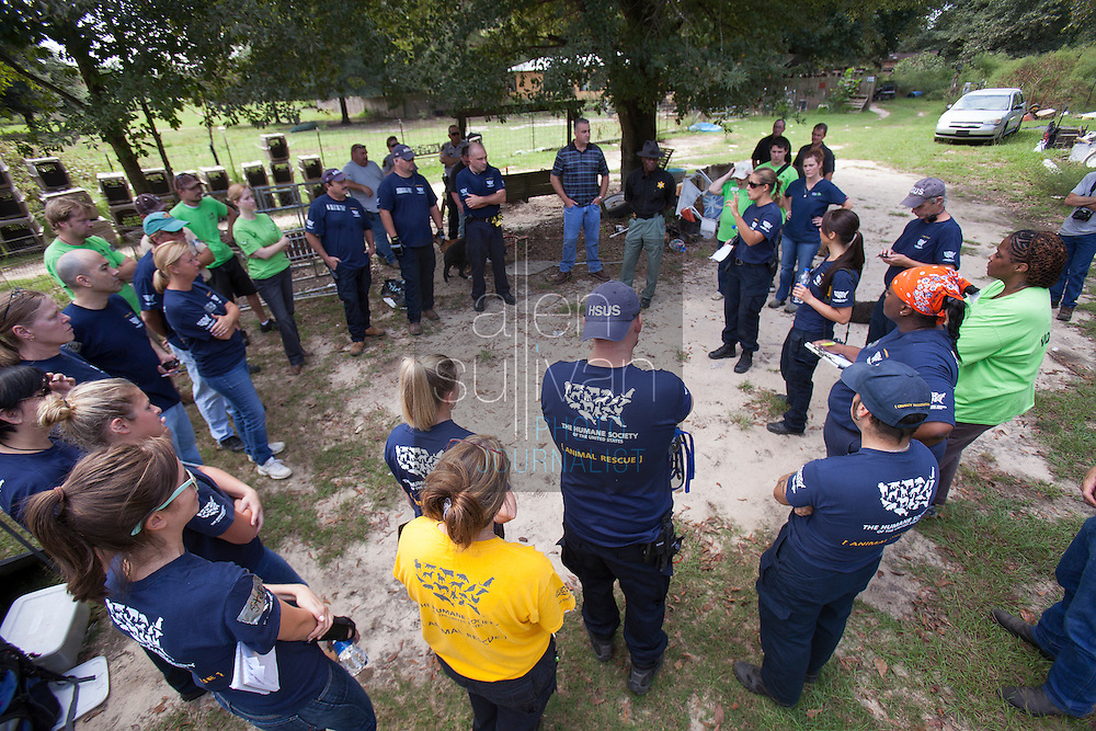 Teams are organized during a raid on a puppy mill in Johnston, SC on Tuesday, Sept. 11, 2012. HSUS workers found over 200 dogs, nine horses and 30-40 fowl.