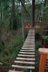 Log Bridge at Canopy Tours NW, Camano Island, Washington, US