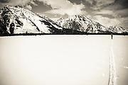Backcountry skier under Mount Moran, Grand Teton National Park, Wyoming USA