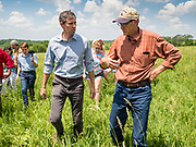 07 JUNE  2019 - LACONA, IOWA: BETO O'ROURKE, left, and MATT RUSSELL talk while they tour Russell's farm, Coyote Run Farm. O'Rouke toured Coyote Run Farm in Lacona Friday. He talked to Russell, the farm's co-owner, about the impact of President Trump's tariffs against China and proposed tariff's against Mexico on Iowa farmers and how climate change was changing American agriculture. O'Rourke, running to be the 2020 Democratic nominee for the US Presidency, has made climate change a central part of his campaign. Iowa traditionally hosts the the first selection event of the presidential election cycle. The Iowa Caucuses will be on Feb. 3, 2020.                               PHOTO BY JACK KURTZ