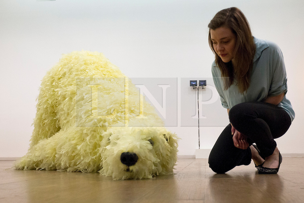 © Licensed to London News Pictures. 18/06/2013. London, UK. A member of gallery staff looks at Paola Pivi's 'Have you seen me before?' (2008), a still life sculpture of a polar bear with fur made from chicken down, at the press view for an exhibition entitled 'Have You Seen Me Before' at the Whitechapel Gallery in East london today (18/06/2013). The exhibition, containing works of art belonging to private collector Sandretto Re Rebaudengo, is on show at the gallery from the 18th of June to the 8th of September 2013. Photo credit: Matt Cetti-Roberts/LNP