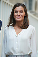 Queen Letizia of Spain attends Working Meeting of the Spanish Association Against Cancer (AECC) at Junta de Madrid of the AECC on July 1, 2019 in Madrid, Spain