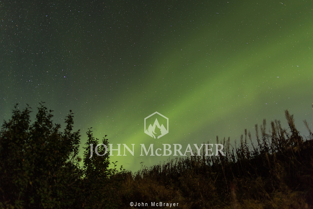 My first view of the Aurora after waiting for days for the sky to clear in Denali National Park. © John McBrayer