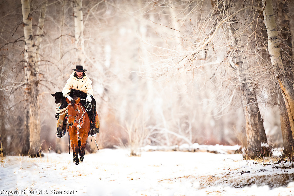 Going to the Barn, Caleb Munns, 6x Ranch, Mackay, Idaho