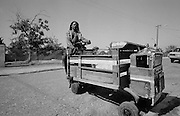 Rasta on cane cart
