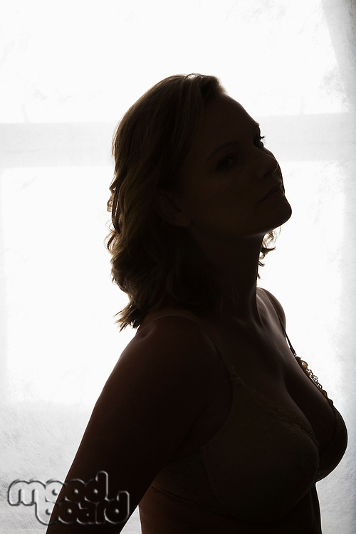Silhouette portrait of semi-dress woman