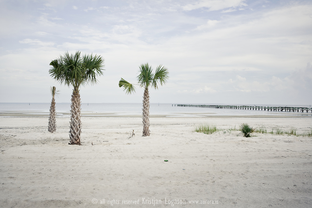 Palmtrees on empty and closed Long beach in Louisiana