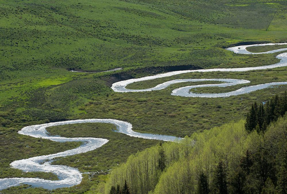 East Creek meanders, Gothic Valley, Colorado
