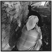 Headscarf, woman milking a black goat; Frau mit Kopftuch melkt schwarze Ziege, femme avec foulard en train de traire une chèvre noire. © Romano P. Riedo