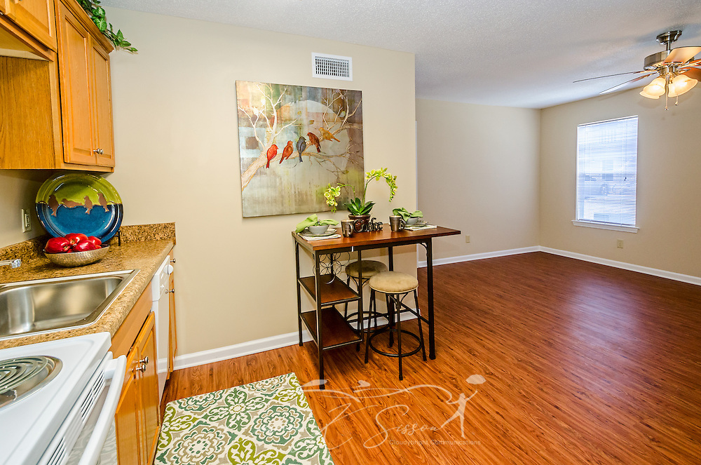 A kitchen and living room is pictured at Robinwood Apartments, June 11, 2015, in Mobile, Alabama. The one-bedroom apartments, located on Old Shell Road, are managed by Sealy Realty. (Photo by Carmen K. Sisson/Cloudybright)