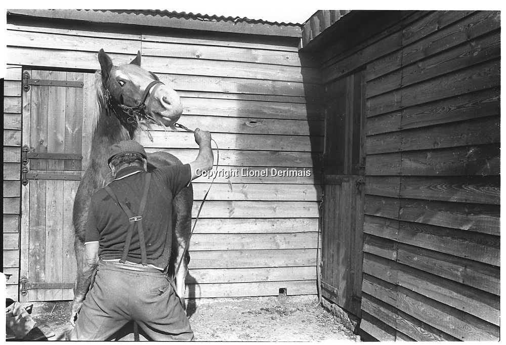 Farrier with horse, London street photography in 1982. Tri-X