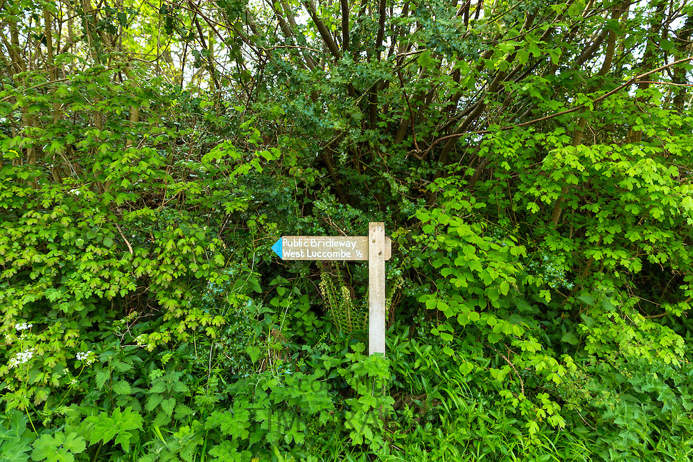 Public Bridleway signpost to West Luccombe in Exmoor National Park near Allerford, Somerset, UK