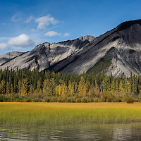 Located in Northern British Columbia, Muncho Lake provided a great example of fall colors against the beautiful gray mountain backdrop.