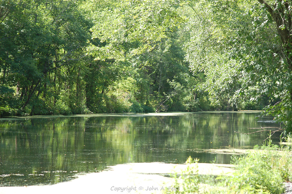 A lazy summer afternoon on the D and R Canal in Hillsborough, NJ